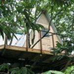 栗の木の上のツリーハウス【ウエスタンレッドシダー施工例 s20111021-4】